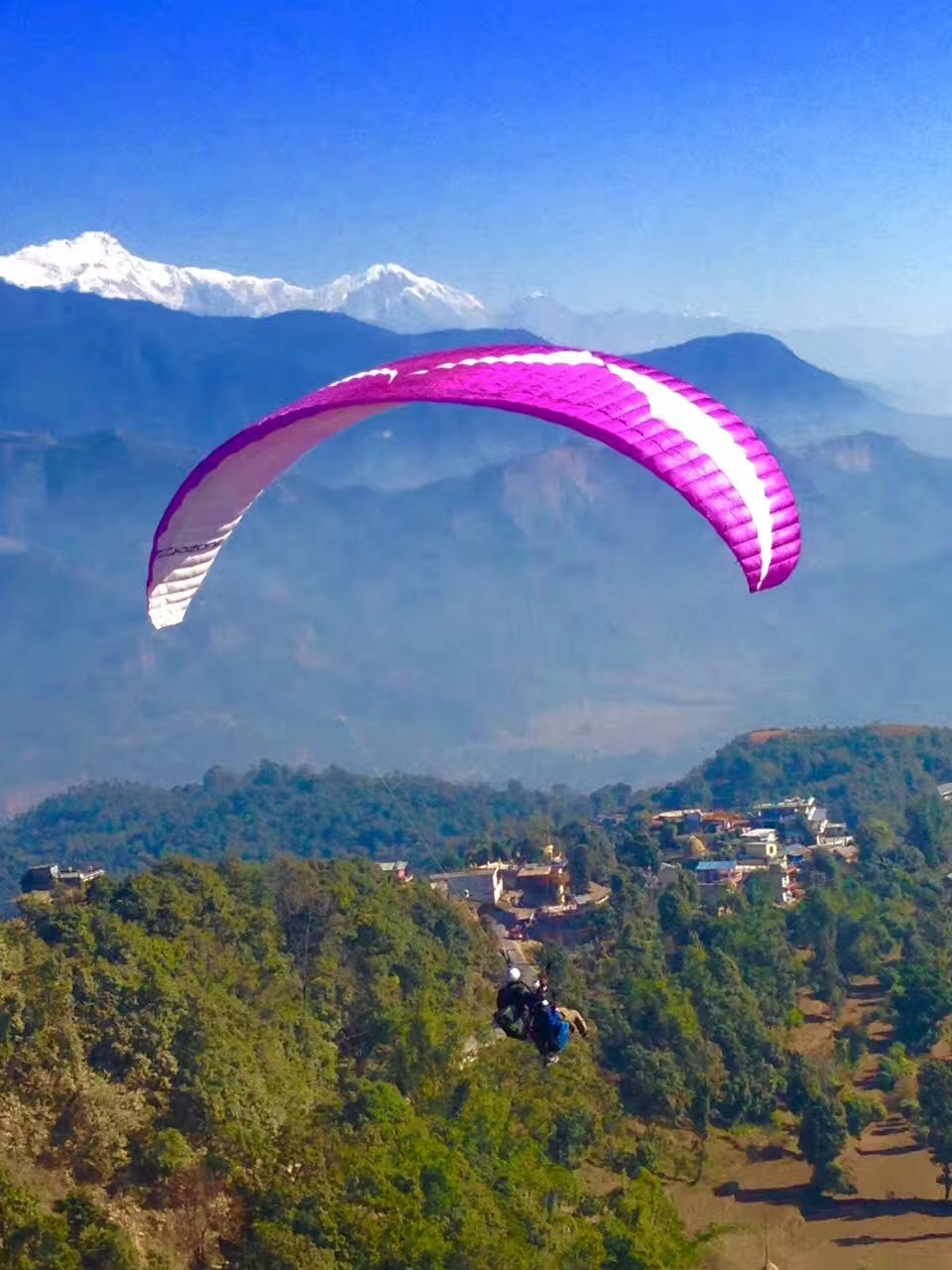 Paragliding in Pokhara - Nepal Alibaba Treks and Tours Pvt
